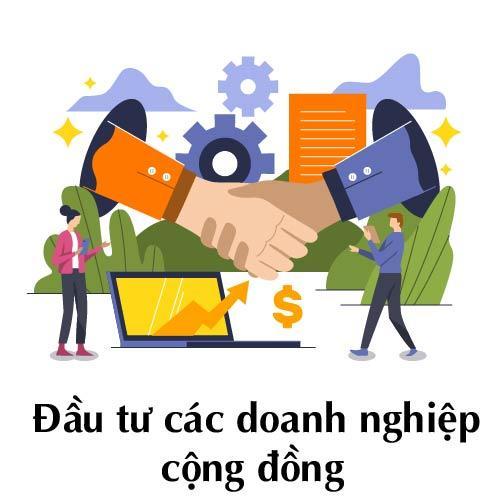 dau-tu-vao-cac-doanh-nghiep-cong-dong